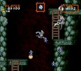Super Ghouls 'N Ghosts SNES Wall bird