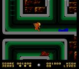 Tom & Jerry NES Through the plumbing, dodging water and insects