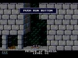 Prince of Persia TurboGrafx CD Typical situation: the Prince is dead