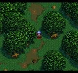 Seiya Monogatari: Anearth Fantasy Stories TurboGrafx CD At this point, the stories are merged. Working your way through a forest