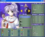 Izumo 3 Windows Character information