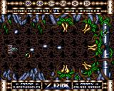Ziriax Amiga The boss of the first level is a breeze compared to the level itself.