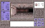 Crystal Rinal PC-98 Trapped in a dungeon