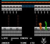Werewolf: The Last Warrior NES A boss made of green slime