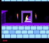 Prince of Persia NES Escape the level after finally opening the exit door