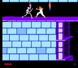 Prince of Persia NES The first battle with a skeleton