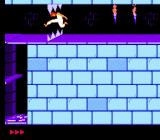Prince of Persia NES Negotiating the chomper trap