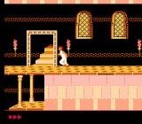 Prince of Persia NES Exiting a level in the main castle