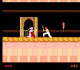 Prince of Persia NES Battling against the backdrop of a starry night