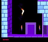 Prince of Persia NES Our hero finds himself back in the dungeon; in this segment, he drinks a potion which makes him float gently down during a fall that would normally kill him