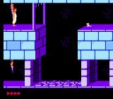 Prince of Persia NES The mouse on the far ledge helps out by pressing the switch stone