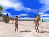 Beach Volley Hot Sports Windows Isn't it sexy? (demo version)