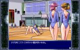 Cry Sweeper PC-98 Stalking pretty girls in gym outfits... Nah, not really. Investigating