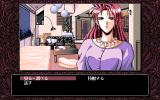 Desire PC-98 Standard menu options