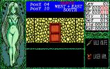 Dragon Knight PC-98 This is a door. What did you think?