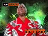 WCW Nitro PlayStation Ric Flair loading screen