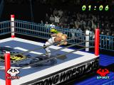 WCW vs. the World PlayStation Throwing the opponent back.