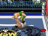 WCW vs. the World PlayStation Arms and legs lock