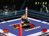 WCW vs. the World PlayStation Throwing down