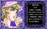 "Sei Senshi Mokkoriman PC-98 Each level begins with a stylish picture of the ""boss girl"""