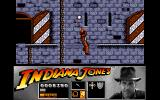 Indiana Jones and the Last Crusade: The Action Game Amiga Level 2 - Swinging across a ledge using Indy's trusty whip.