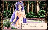 Romance wa Tsurugi no Kagayaki: Last Crusader PC-98 You can see a naked princess in this game... not every game can boast that :)