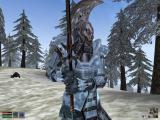 The Elder Scrolls III: Morrowind Windows Ice armor - looks pretty cool, but I might need some heating