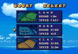 Jennifer Capriati Tennis Genesis Court select