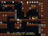 Spelunky Windows Buy the cape if you want to fly
