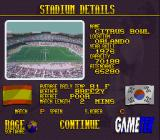 Elite Soccer SNES Stadium details before a match