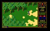 Xak II: Rising of the Redmoon PC-98 Forest