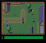 Xak III: The Eternal Recurrence TurboGrafx CD Exploring the town