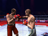 Boxing Manager Windows The 3D match presentation (demo version)