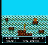 Moon Crystal NES Waterfall