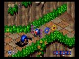 Sonic 3D Blast SEGA Saturn It's not a Sonic game without loops.