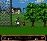 Tom and Jerry: Frantic Antics! Genesis Two Players