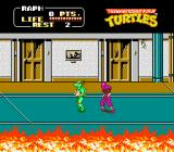 Teenage Mutant Ninja Turtles NES Graphics were amazing for the time, and similar to the Arcade version (with NES limitations, of course).
