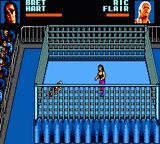 WWF Wrestlemania: Steel Cage Challenge Game Gear Hitman has Nature Boy down.