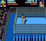WWF Wrestlemania: Steel Cage Challenge Game Gear IRS selling a kick.