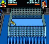 WWF Wrestlemania: Steel Cage Challenge Game Gear IRS beats the Macho Man?
