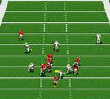 NFL '95 Game Gear On the field