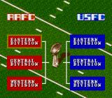 Football Fury SNES Choose a division