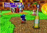 Sonic Jam SEGA Saturn Sonic activating a check point post