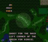 The Irem Skins Game SNES Advice for the second hole