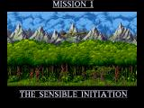 Cannon Fodder Amiga Prelude to the mission.