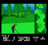 Greg Norman's Golf Power NES The second USA course