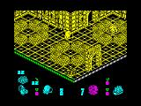 Head Over Heels ZX Spectrum The sleeping rabbits can provide you with extra lives -- as well as invincibility, fast speed (Head) or high jumps (Heels) for a limited time