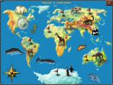 World Riddles: Animals Windows World map
