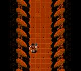 Ikari Warriors II: Victory Road NES This transitional hallway is between all the levels.