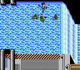 Ikari III: The Rescue NES The fight in the rapids.